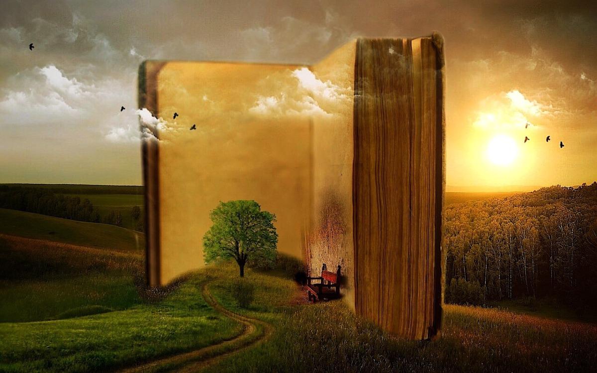 Bibel lesen – abersinnvoll
